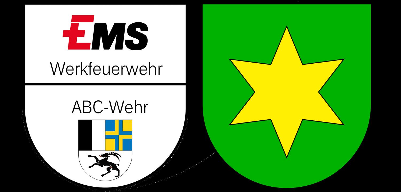 FW EMS-Chemie AG / Tamins